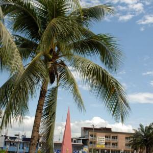 Tarapoto: Ciudad de las Palmeras