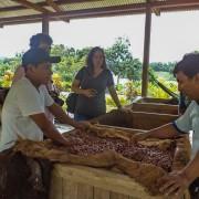 Turistas aprendiendo como se fabrica el chocolate