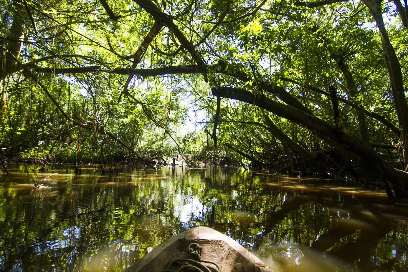 Foto Reserva Tingana
