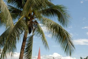 Plaza de Armas Tarapoto
